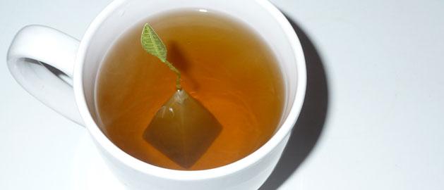 Cup of Tea - Geoff McDonald